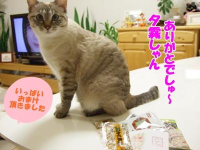 yugiri5.jpg