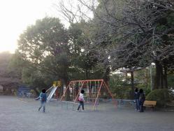 善福寺公園 (5)