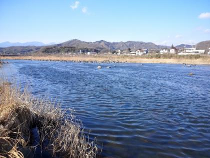 20130305_団地裏_SCA3K0183