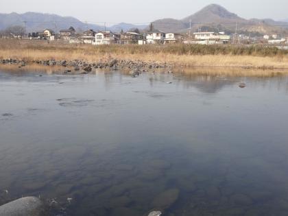 20130307_団地裏_SCA3K0199