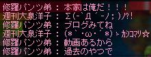 09犬kブログみてみて~w