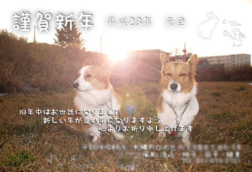 nenga001.jpg