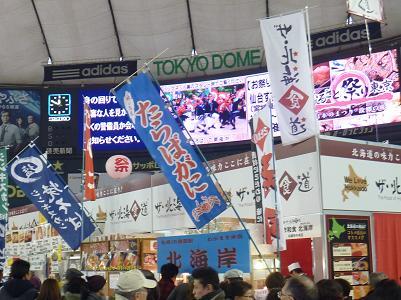 東京ドーム8