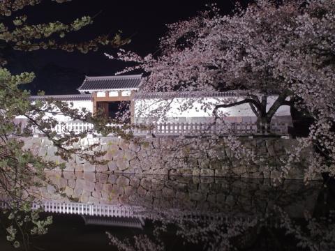 小田原城夜景