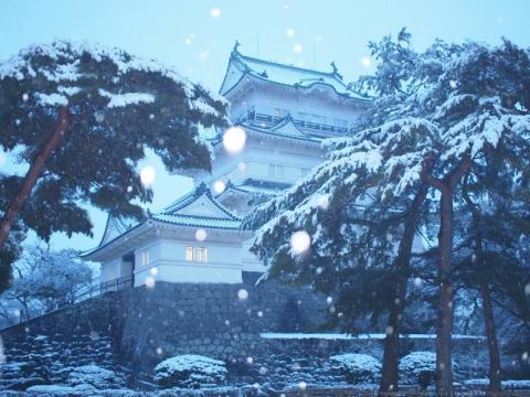 雪の小田原城
