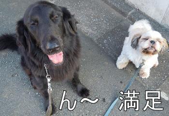 貅?雜ウ_convert_20110915204942