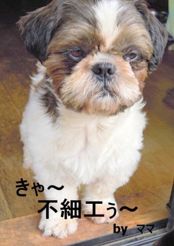荳咲エー蟾・_convert_20111020195409
