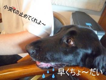 2011_0704_074424-P1310810-1_convert_20110704144351.jpg