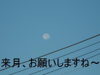 DSCN4329_convert_20110915204158.jpg