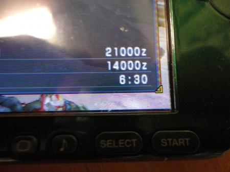 DSC00347_convert_20110119191054.jpg