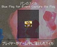 海辺へ行こう パンのスイカ Blue Flag for Event Capture the Flag
