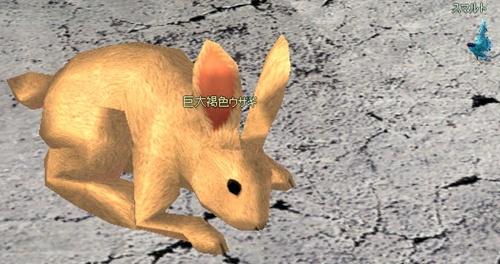 巨大褐色ウサギ お月見 うさぎとうし 7