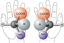 Chirality_with_hands.jpg