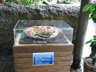 那珂川水遊園