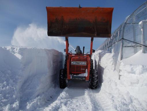 20130128_除雪中2