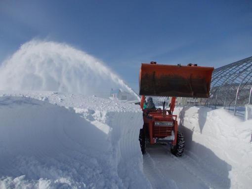 20130128_除雪中3