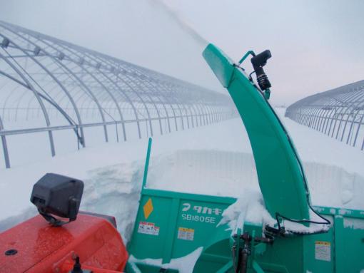 20130221_通路の除雪