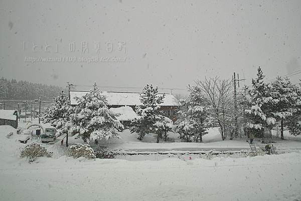 2010_02_05雪1
