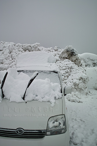 3月10日の雪