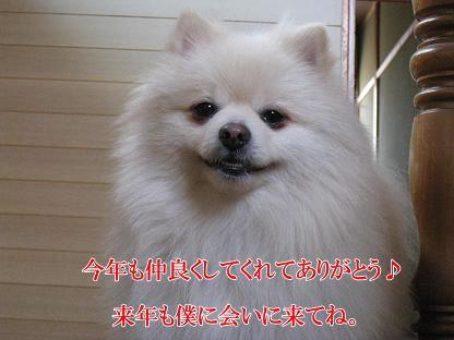 image_20091231230959.jpg