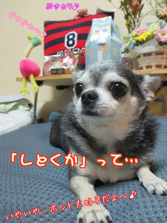 チャポリ&ナオミ&ぷ~が