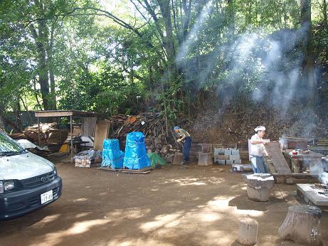004 木漏れ日