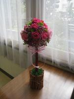 watanabe2012 2