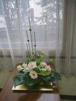 bextukouya20111.jpg