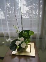 hatayama20121.jpg
