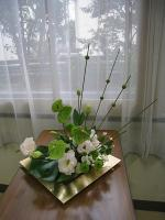 hiyama20121.jpg
