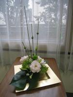 shiraishi20121.jpg