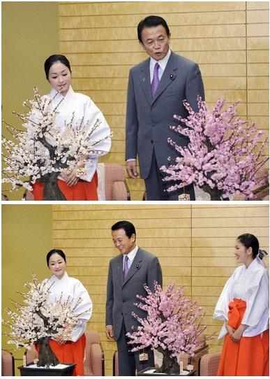 2009sakuraaso001.jpg