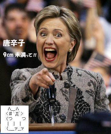 Hillary9cm.jpg