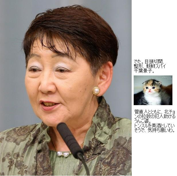chibakeikobakannaikaku1.jpg