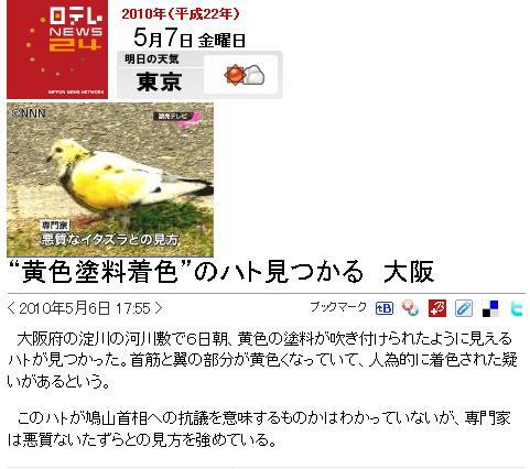 hatokiro0507.jpg