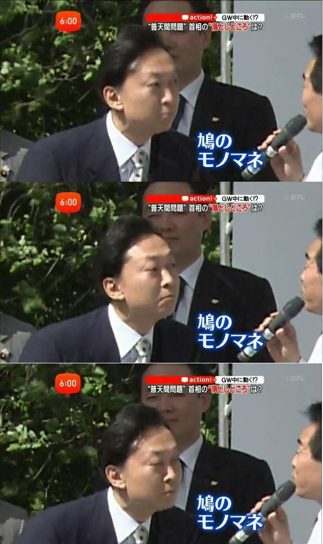 hatomanehato3.jpg
