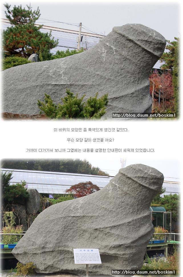 koreankochuwww1.jpg