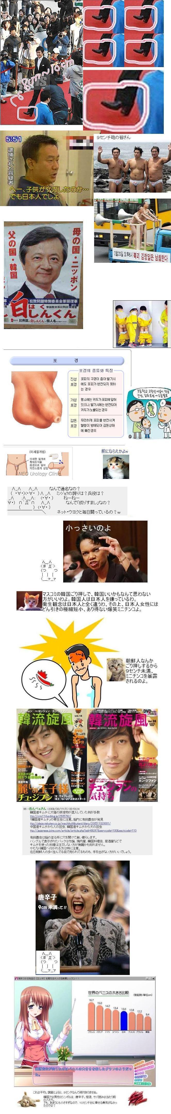 koreanotoko9cmww1.jpg