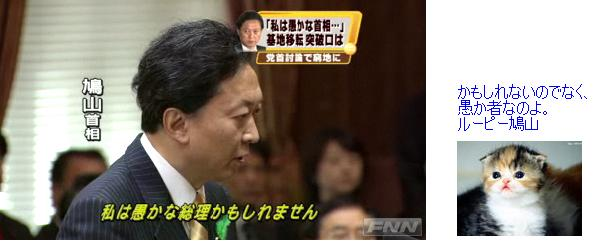 loopyhatoyama201004oroka.jpg