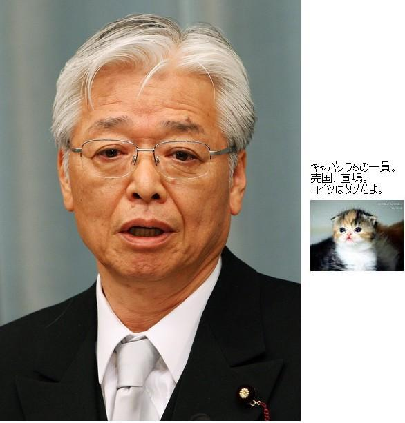 naoshimabakannaikaku1.jpg