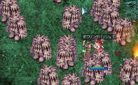 5_20100129084905.jpg