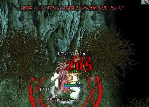 9_20100129085147.jpg