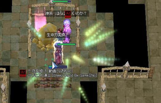 9_20100208001439.jpg