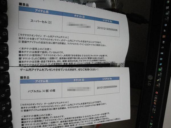 9_20101226210916.jpg