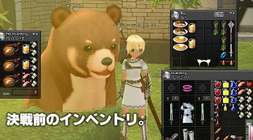 mabinogi_2009_06_20_227.jpg