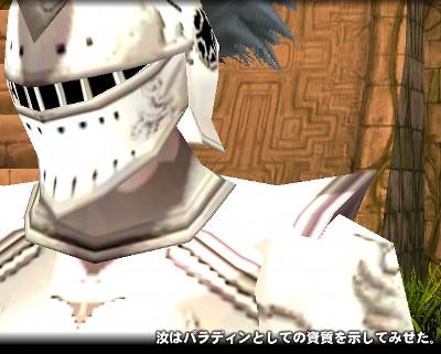 mabinogi_2009_06_29_031.jpg