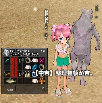 mabinogi_2010_01_26_002.jpg