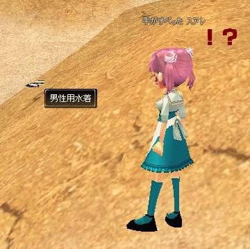 mabinogi_2010_01_28_001_20100211150211.jpg