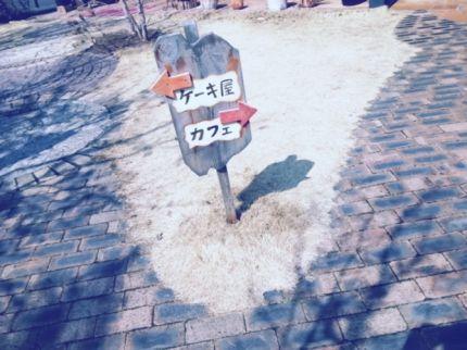 b2_20120303174327.jpg