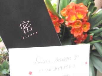 hisoka20120422 (2)